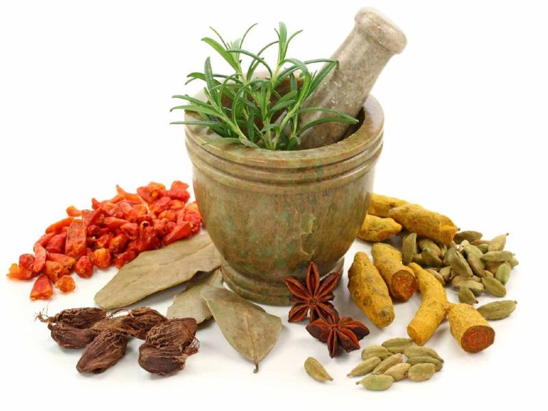 در ماه رمضان با این گیاه دارویی رفع تشنگی کنید