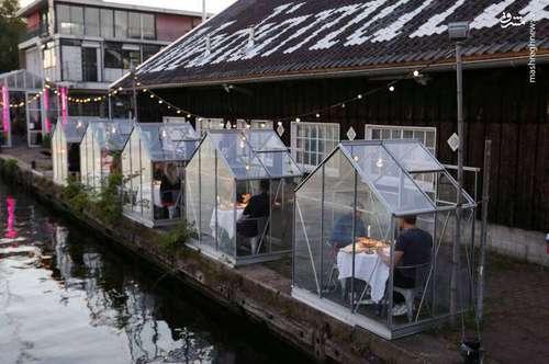 رستوران به شکل اتاق قرنطینه+ (عکس)