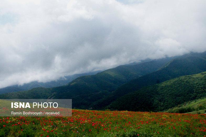 ایران زیباست؛ «دره بهشت»+ عکس