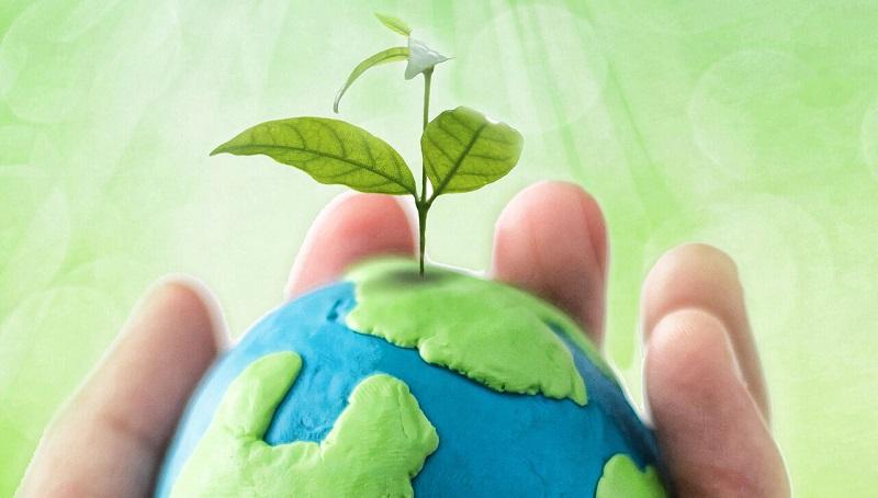 با این ۹ مورد بهسادگی طبیعت را حفظ کنیم