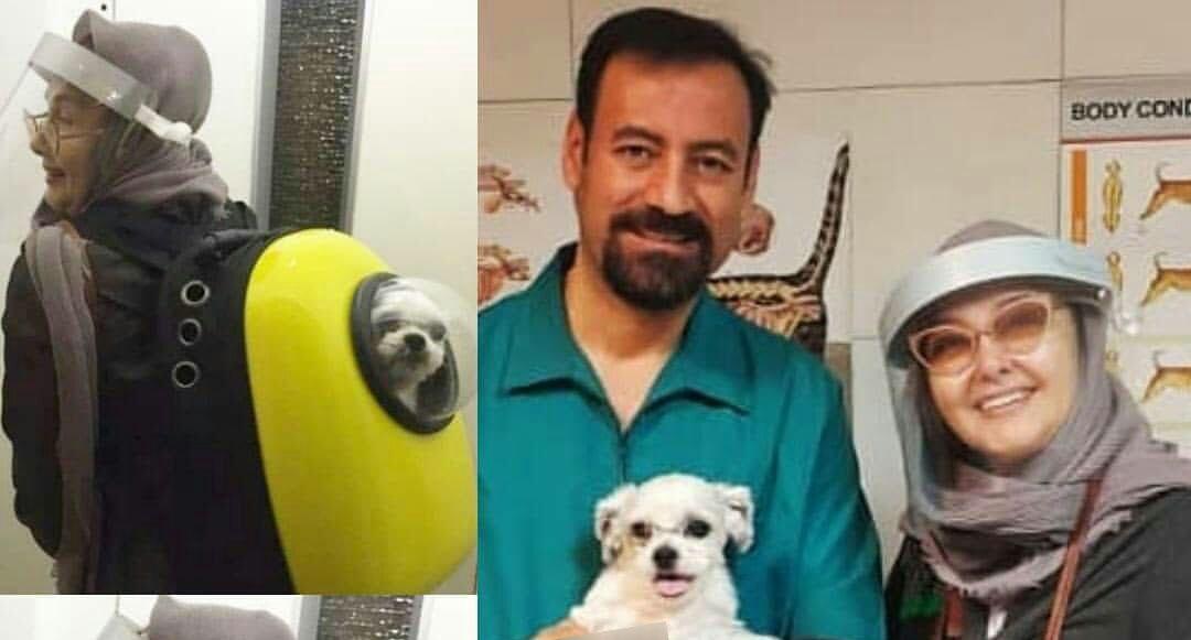 کتایون ریاحی این گونه سگش را به دامپزشکی میبرد! + عکس