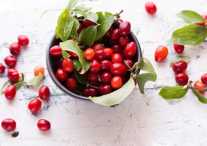کاهش سریع حرارت بدن در روزهای گرم با این میوه