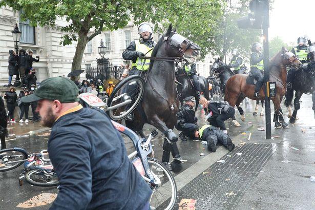وحشیگری پلیس اسبسوار لندن + عکس