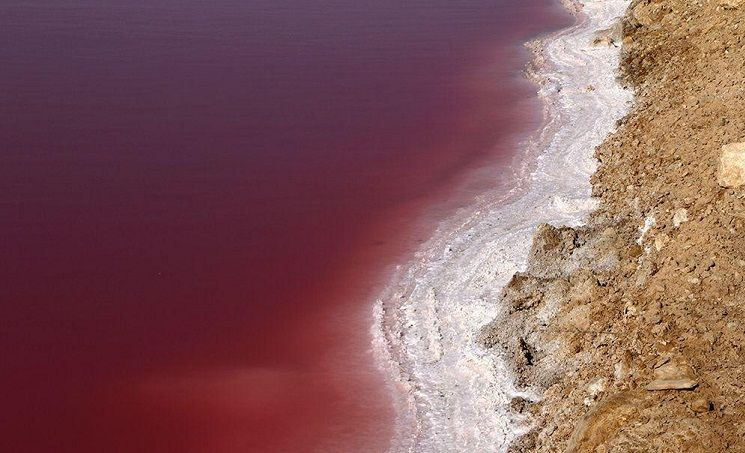 دریاچه نمک قم برای اولین بار سرخ شد + عکس