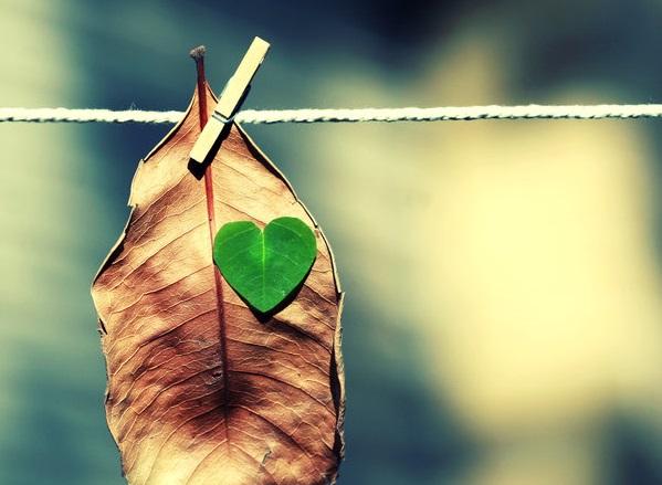 تنها چیزی که دل انسان را پیر میکند