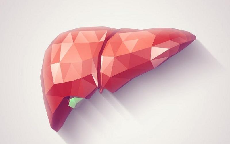 سلامت کبد را پیش از بیماری جدی بگیرید