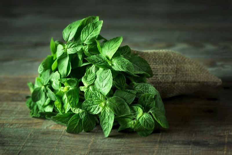سبزی معطر و شگفتانگیز برای مبارزه با سندروم رودهتحریکپذیر
