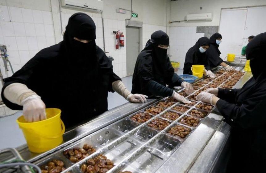 کارخانه عجیب تولید خرما در عربستان + عکس
