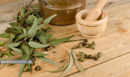 14 مزیت روغن اوکالیپتوس برای سلامتی و زیبایی