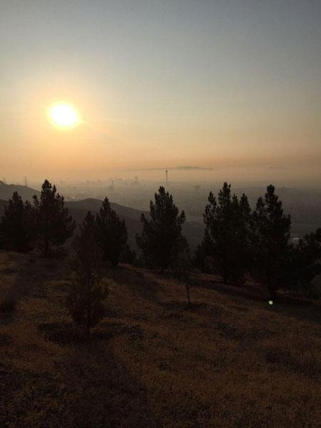 آلودگی هوا در تهران به کمک کرونا آمد