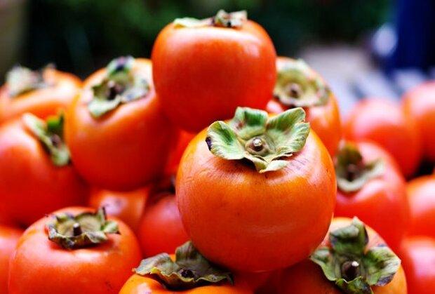 خواص «خرمالو» را بشناسیم/ تقویت سیستم ایمنی بدن و ریه با این میوه پاییزی