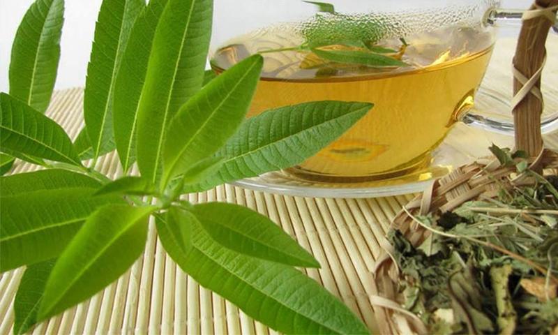 17 خاصیت بی نظیر به لیمو/تقویت سیستم ایمنی و سم زدایی با این گیاه