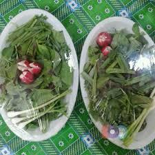 هشدار؛ سبزی های  بسته بندی شده آلودگی بالایی دارند