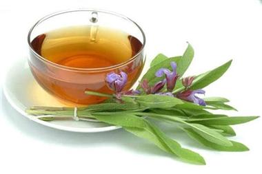 خواص گیاه مریم گلی؛ از تقویت حافظه تا درمان نفخ