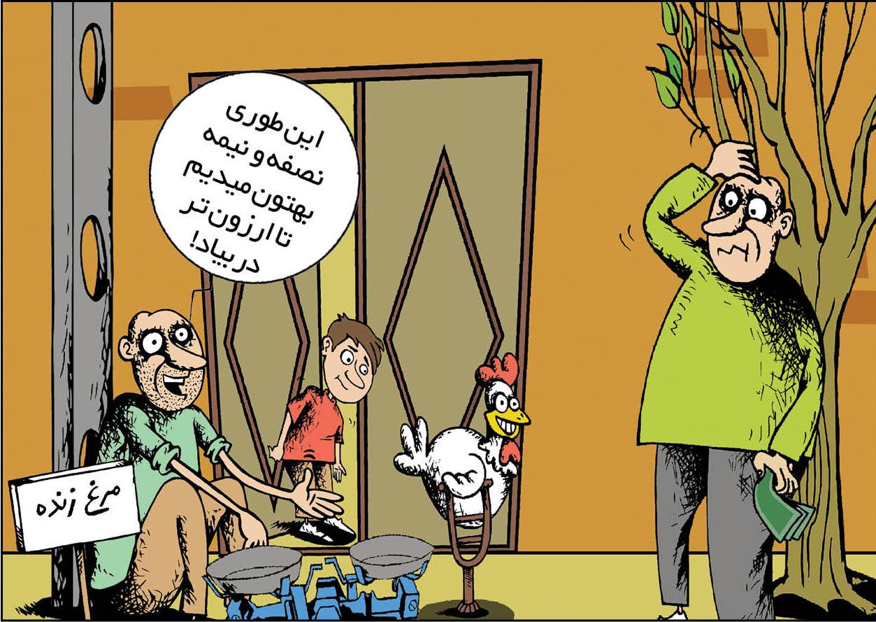 مرغ باز هم گران شد + عکس