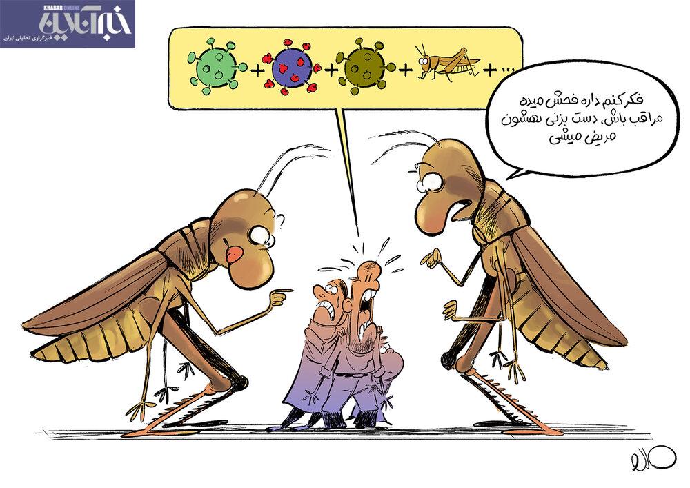 ملخها هم حمله کردند + عکس