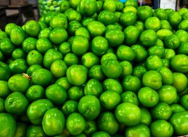 بلای زیاد خوردن گوجه سبز داخل معده