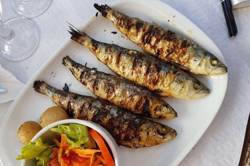 اگر می خواهید دیابت نگیرید از این نوع ماهی غافل نشوید