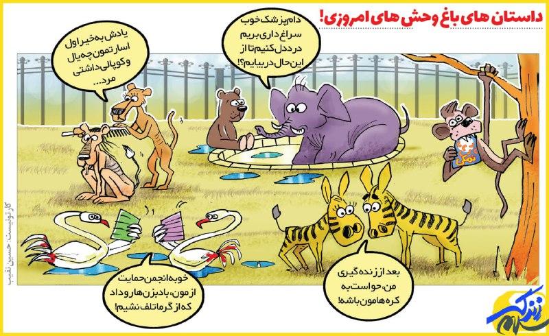 وضعیت عجیب باغ وحش های امروزی + عکس
