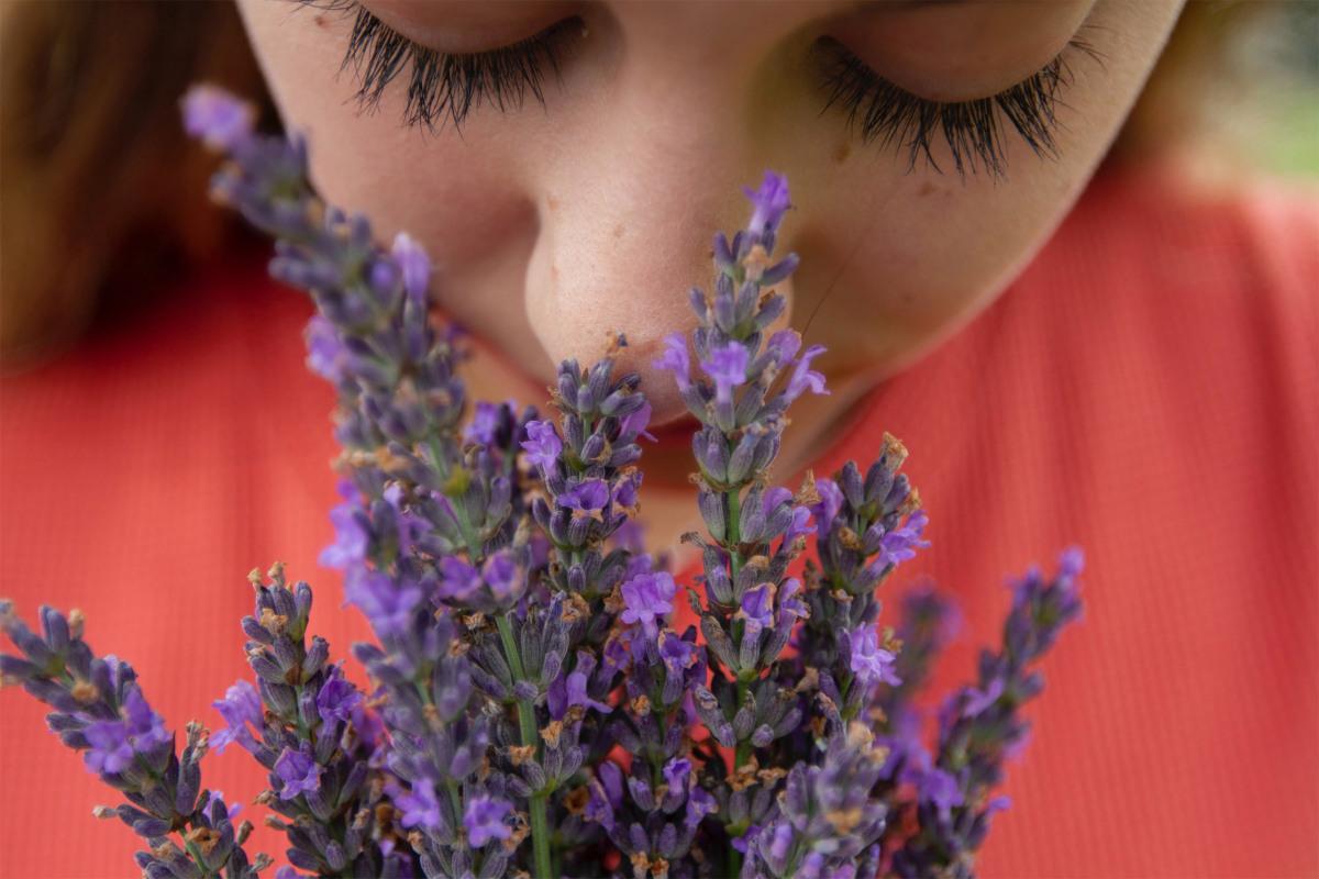 دلیل از دست دادن حس بویایی