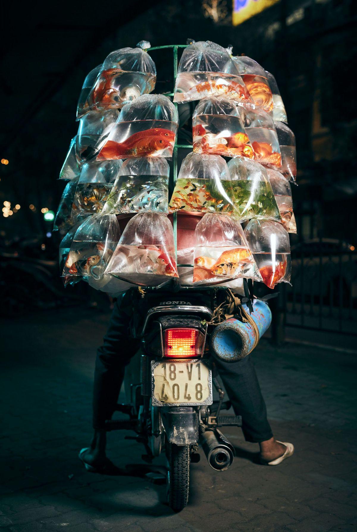 تصویری جالب از یک ماهی فروش!