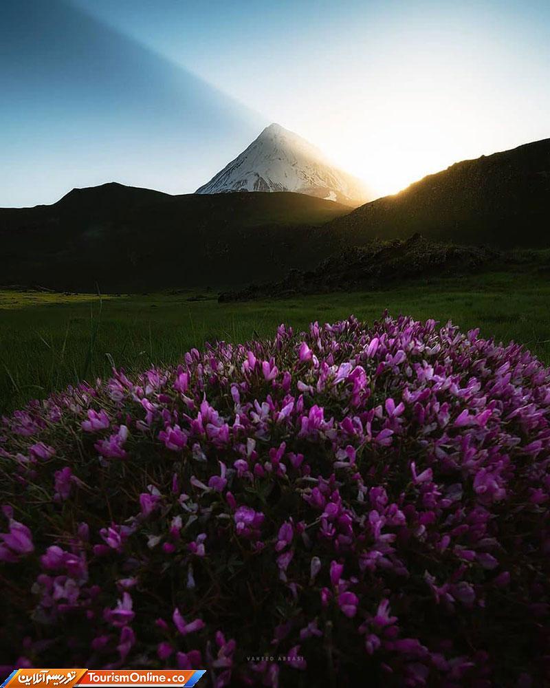 طلوع زیبای خورشید + عکس
