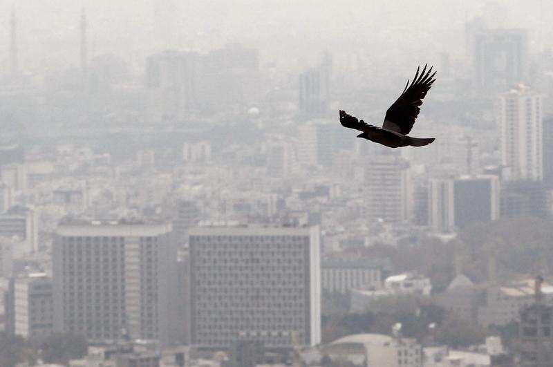 آلودگی هوا در دوران بارداری و خطر آن برای نوزادان