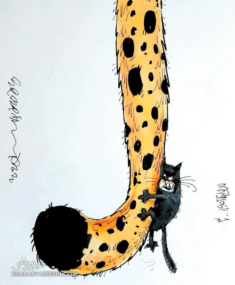 رقابت یوزهای ایرانی با گربه سیاه فوتبال آسیا + عکس