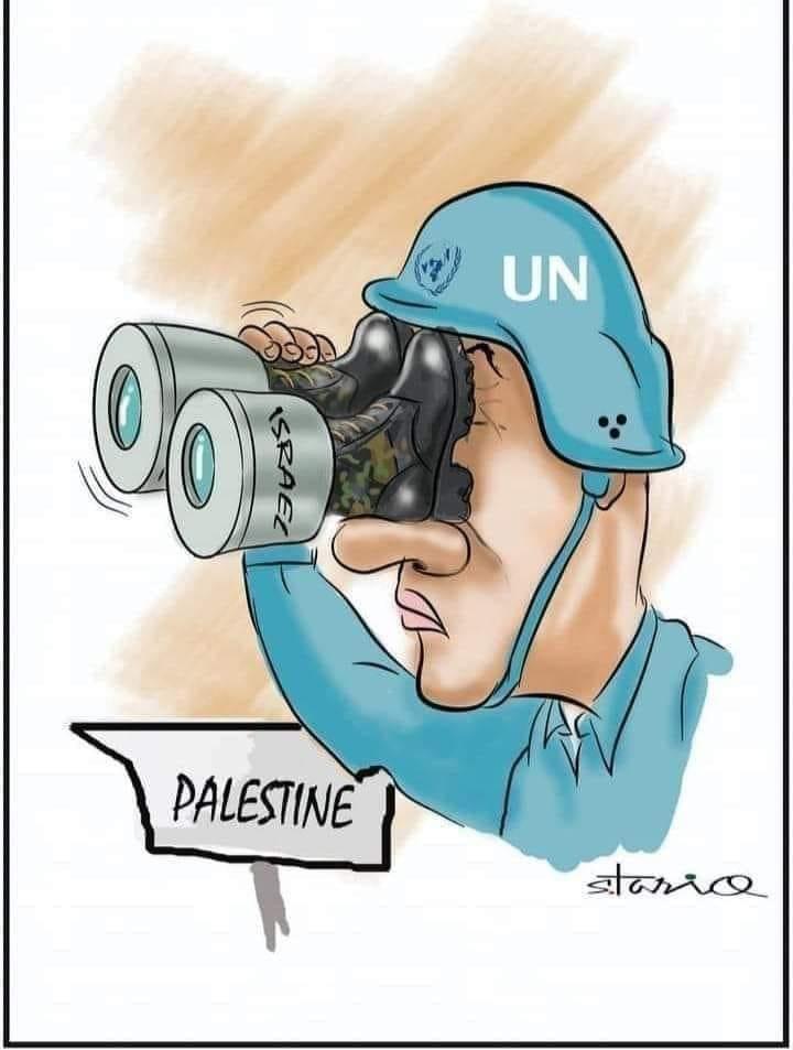 واکنش سازمان ملل به جنایات رژیم صهیونیستی + عکس