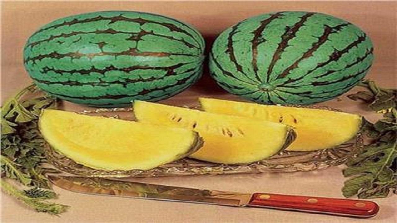 فوائد هندوانه زرد یا آناناسی که باید بدانید