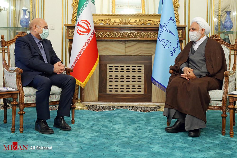 دیدار رئیس مجلس با رئیس قوه قضائیه + عکس