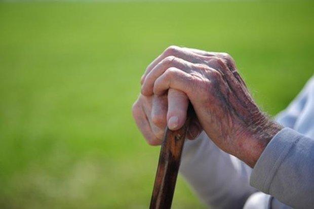 اختصاصی / چند درصد جمعیت کشور سالمند هستند ؟