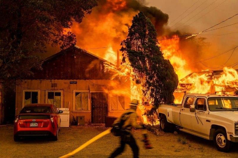 گسترش آتش جنگل ها به سمت خانهها و دمای ۵۴ درجه در کالیفرنیا  + عکس