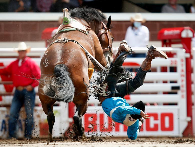 پرتاب شدن خطرناک سوارکار از روی اسب  + عکس