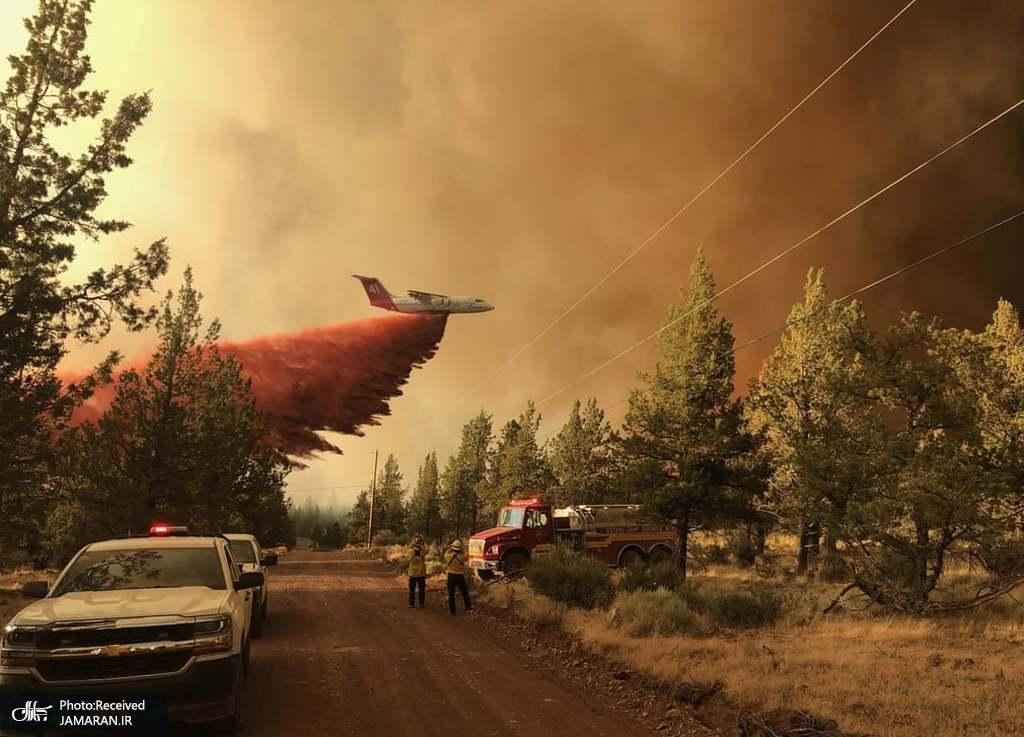 آتشنشانان در حال مهار آتش سوزی جنگلی در آمریکا + عکس