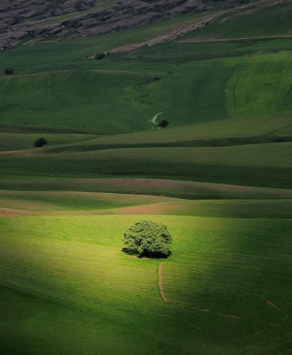 طبیعت بکر لرستان + عکس
