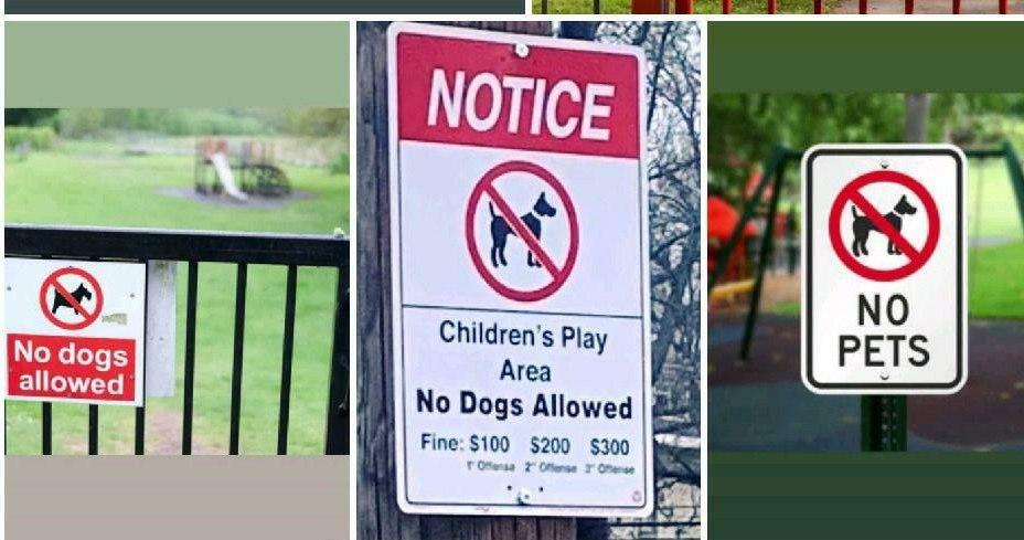 ممنوعیت سگ گردانی در پارکهای اروپایی و آمریکا + عکس