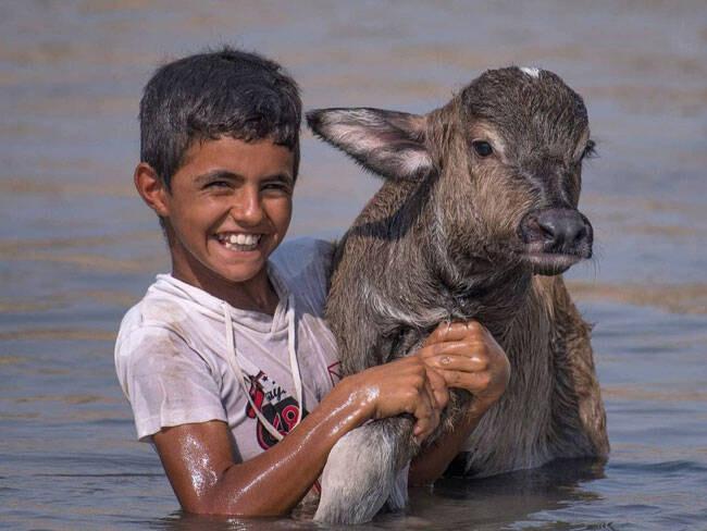 زیباترین تصویر از لحظه رهاسازی آب در هورالعظیم + عکس