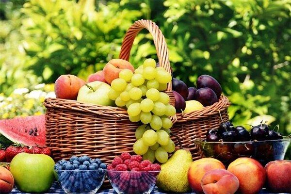 13 میوه و سبزی که از آلزایمر جلوگیری می کند