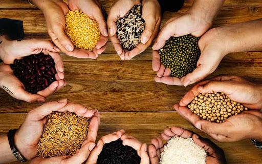 خوراکی هایی که نفخ و یبوست را درمان می کند