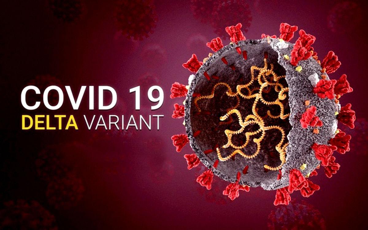 این واریانت کرونا 1000 برابر بیشتر در بدن ویروس تولید می کند