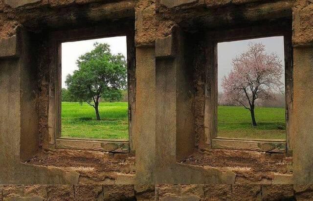 چهار فصل تویسرکان زیبا از یک قاب! + عکس