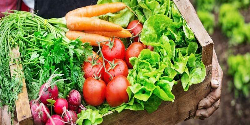 آیا محصول سالم با محصول ارگانیک تفاوت دارد؟