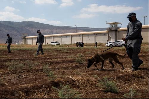 ماموران امنیتی اسراییلی در حال جستجوی 6 اسیر فراریِ فلسطینی + عکس