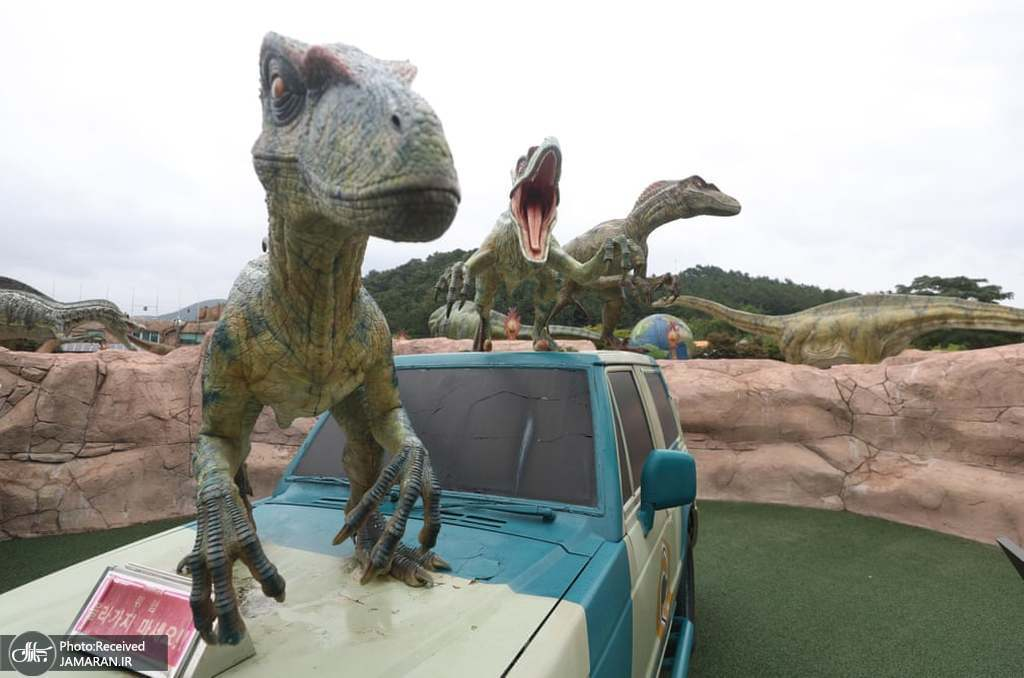 آماده سازی دایناسورها برای نمایشگاه + عکس