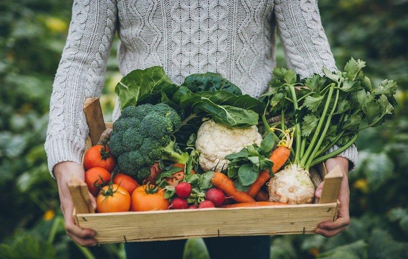 نشانه های کمبود مصرف سبزیجات