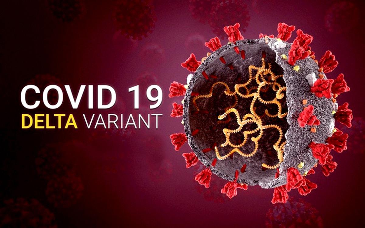 اختصاصی  آیا تقویت کننده های واکسن می توانند نوع دلتا را متوقف کنند؟