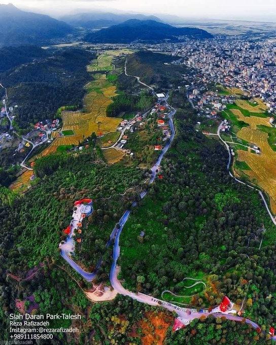 اینجا پارک جنگلی سیاه داران است، سوئیس ایران! + عکس