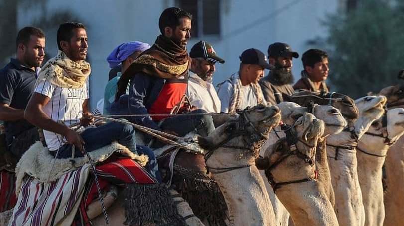 مسابقات شتر سواری در فلسطین + عکس