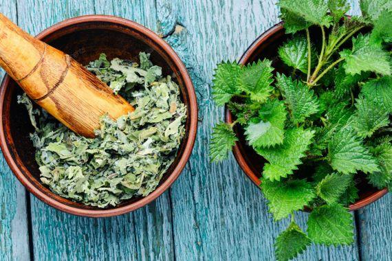 خواص این گیاه از دفع سنگ کلیه تا رفع جوش و لک پوستی